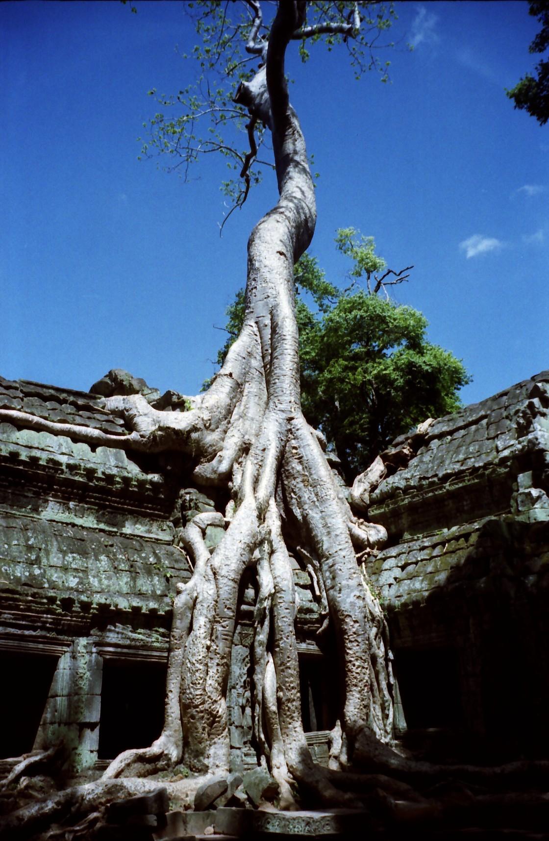 CambodiaB